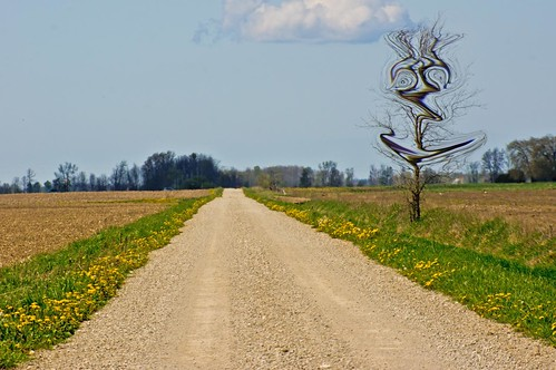 ontario canada tree rural distorted countryroad clearviewtownship ourdailychallenge