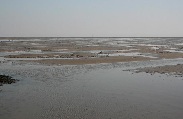 Maplin Sands from Foulness Island