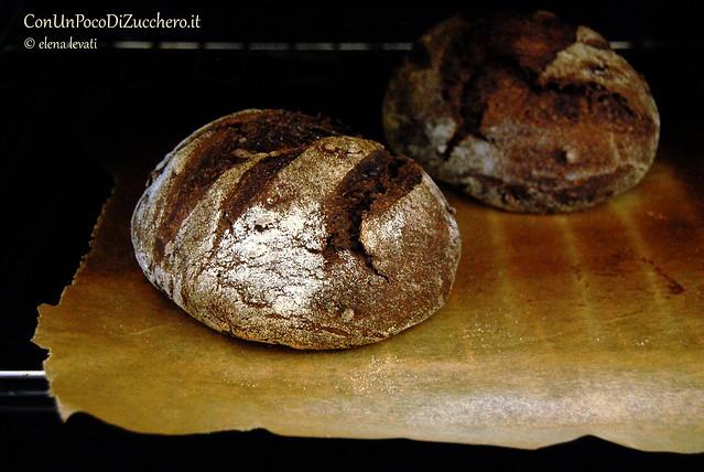Pane al cacao