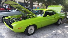 automobile(1.0), automotive exterior(1.0), vehicle(1.0), dodge challenger(1.0), land vehicle(1.0), muscle car(1.0), sports car(1.0),