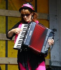accordion, musician, folk instrument, garmon,