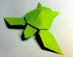 Paper Turtle 1 Photos | Turtle, Jacky Chan | 063