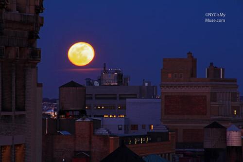 Hello Moon!