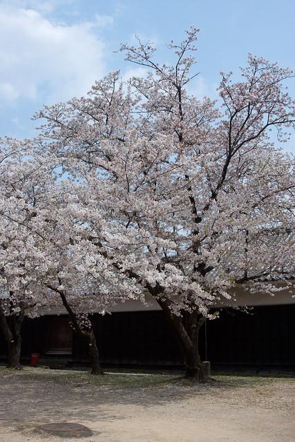 2012-kyushu-537