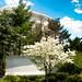 Jefferson Memorial by mdesisto