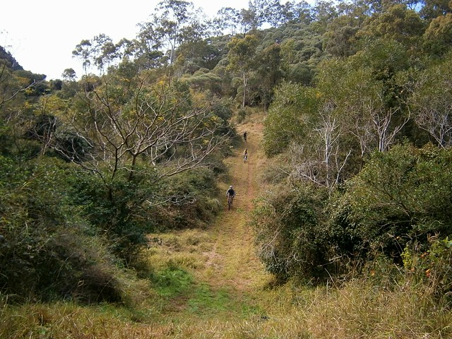 Flinders Plum Descent