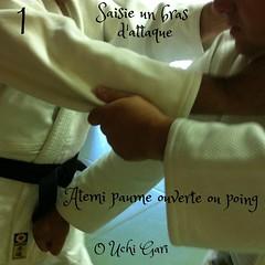 20 Techniques de JJ : 1ere serie Saisie Mains : Technique D) Yoko Dori Kubi (cou)/saisie cou par le côté