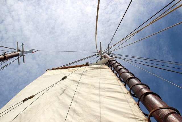 wood rings on the mast
