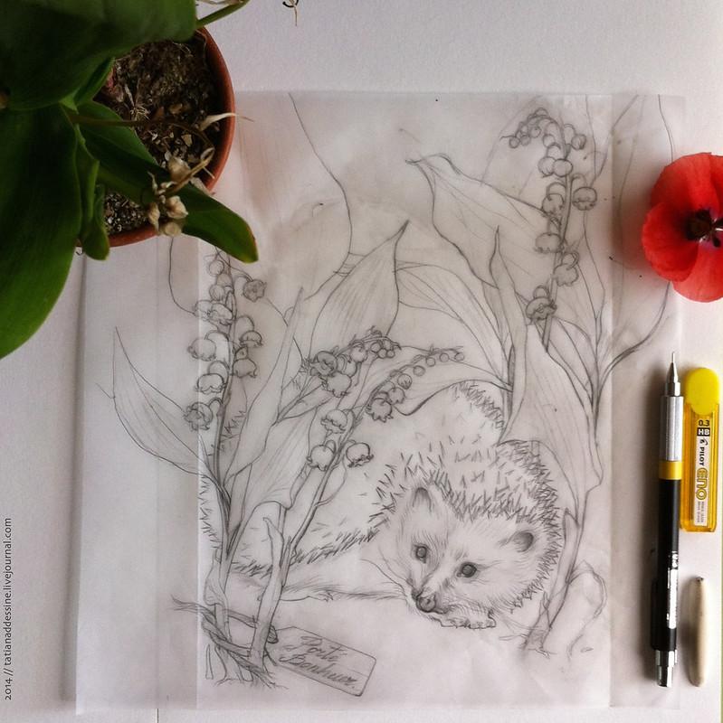 18 page au crayon