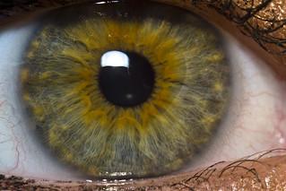 Mary's Eye [Explored]
