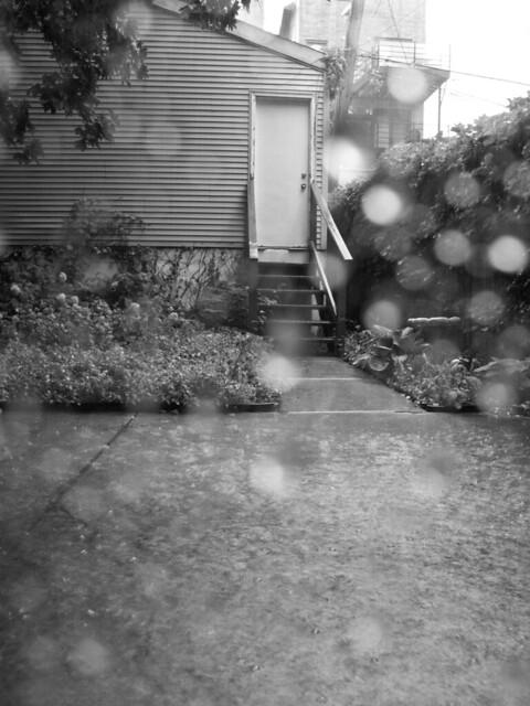 325/365 - Rain