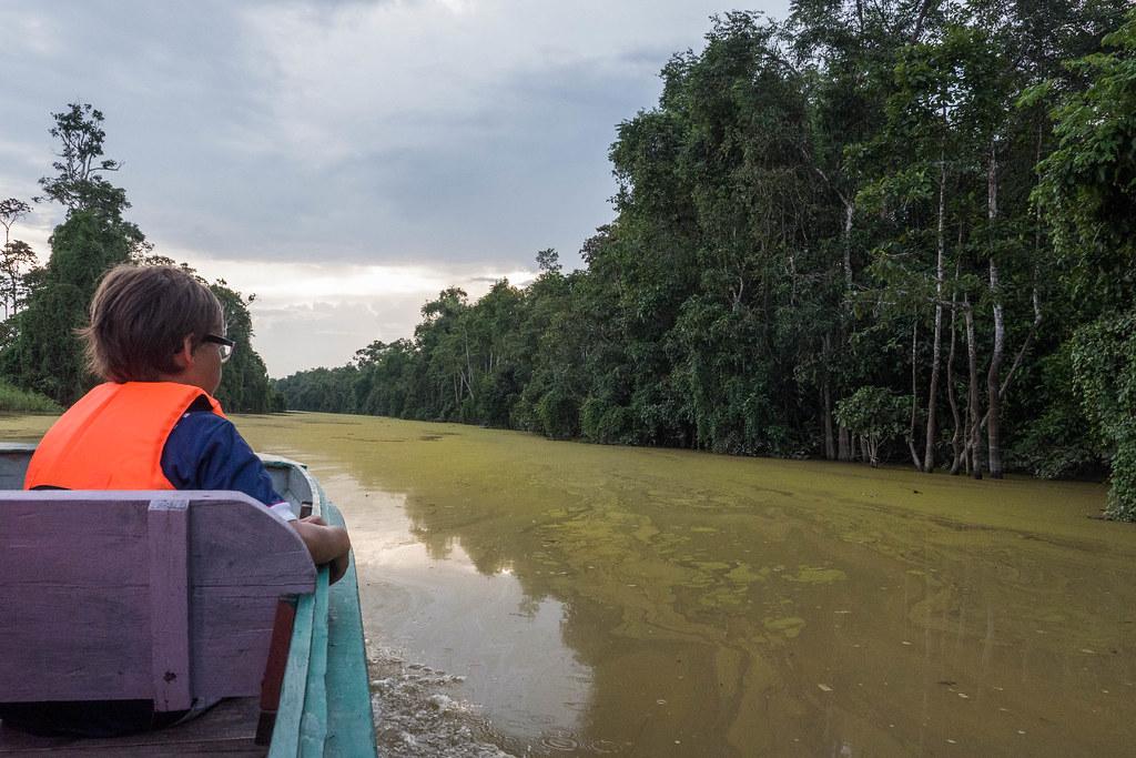 Kinabatangan River Boat.jpg