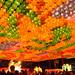 曹溪寺燃燈會...Lotus Lantern Festival by Rosanna Leung