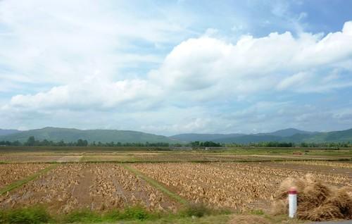 V-Route Quy Nhon-Da Nang (33)