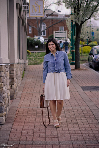 pleats and chambray-1.jpg
