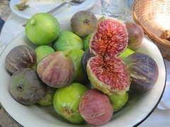 plant(0.0), common fig(1.0), produce(1.0), fruit(1.0), food(1.0), purple mangosteen(1.0),