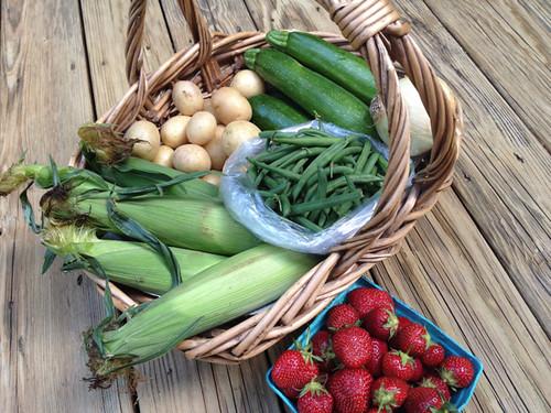 New Jersey Farms > Philly Farm Markets