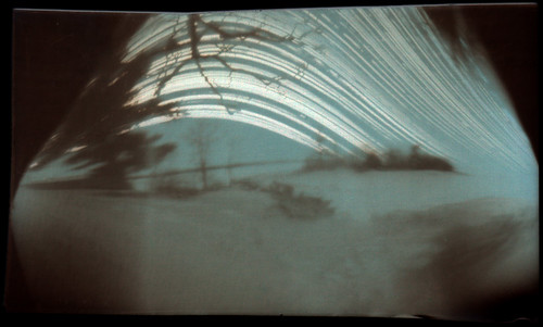 Six Month Solargraphy Exposure