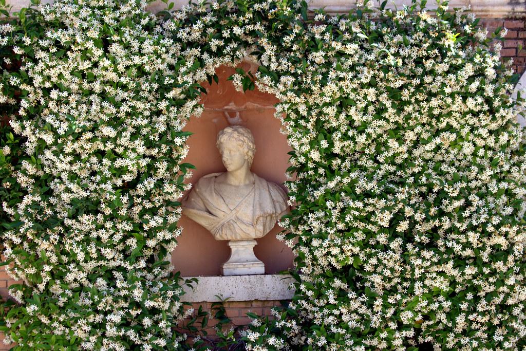 tarde de junio en los jardines de Aranjuez-064