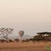 Hot Air Balloon in Serengeti - Tanzania