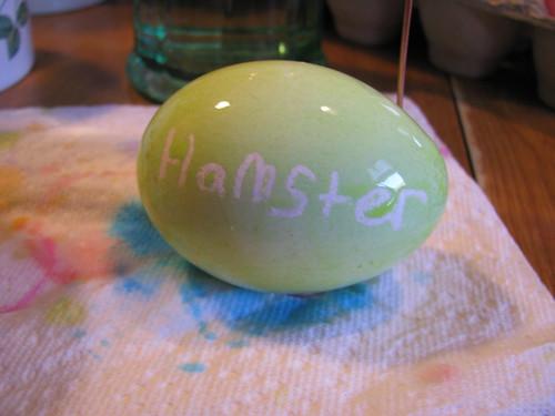 Hamster's First Egg