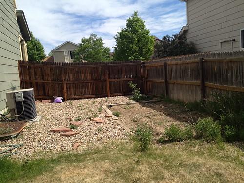 garden before.