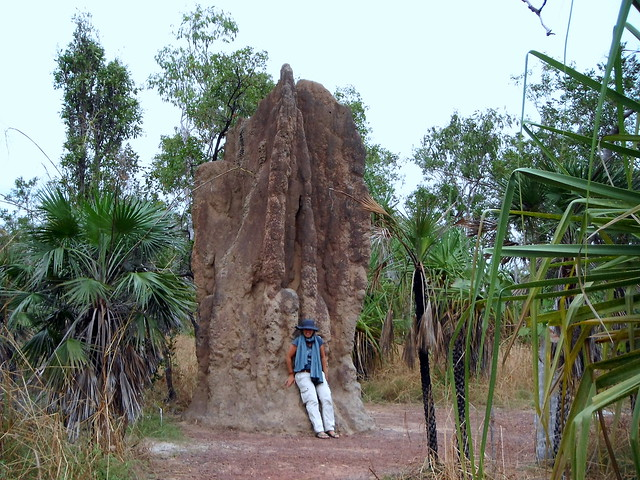 Magnetic and cathedral Termite Hills