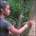 2012x150_rss_Girl_Tree_IMG_1766