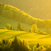 Sun-Kissed ~ Slovakia by Martin Sojka .. www.VisualEscap.es