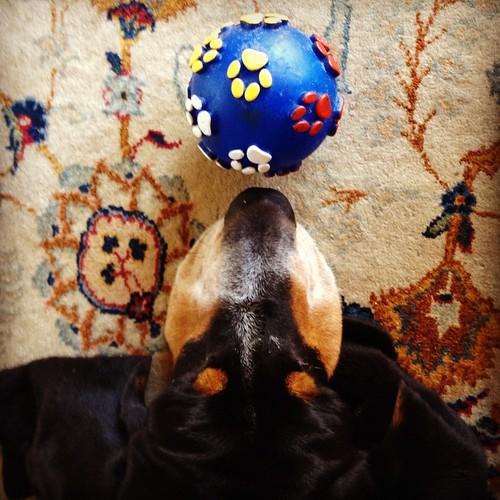 Ball v2.0