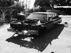 automobile(1.0), automotive exterior(1.0), vehicle(1.0), automotive design(1.0), monochrome photography(1.0), sedan(1.0), vintage car(1.0), land vehicle(1.0), monochrome(1.0), limousine(1.0), black-and-white(1.0), motor vehicle(1.0), classic(1.0),