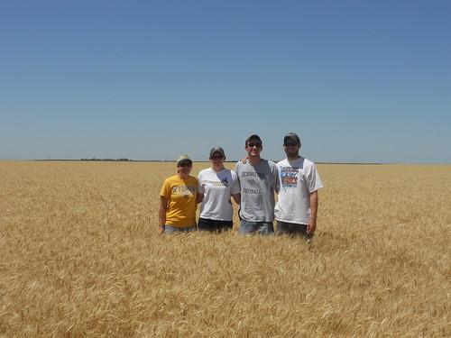 Ashley, Megan, Brandon and James in wheat field