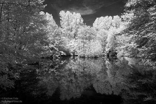 Teich-Infrared.jpg