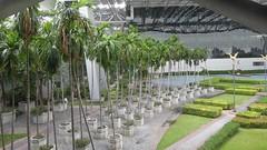 Airport Garden, Suvarnabhumi Airport, Bangkok