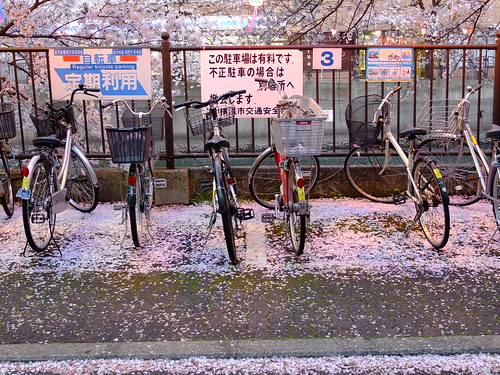bike parking by owenfinn16
