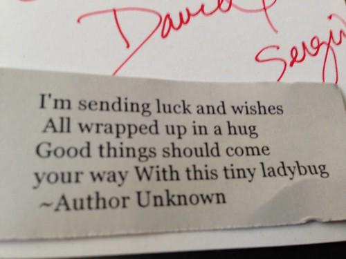 IMG_2559 Ladybug Birthday Gifts from David