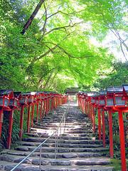 shrine105