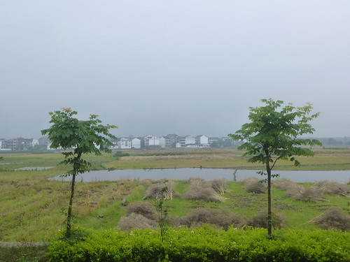 Zhejiang-Cangpocun (12)