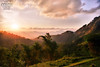 Sri Lanka  by Saeed Al-Shehhi