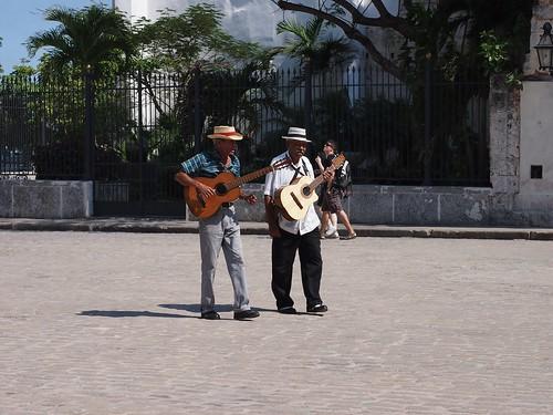 Havana-111