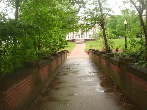 rainy walkway