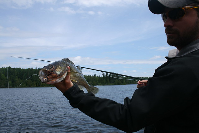 ESNAGI 2012 CANADA