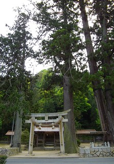 加茂総社宮 #7