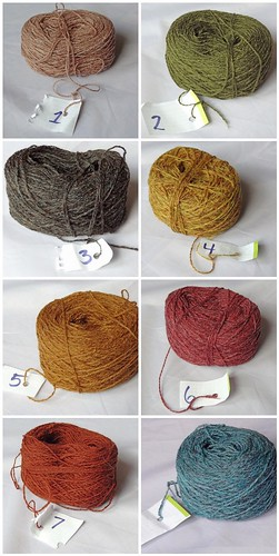 Blog Week Shawl Yarn Montage