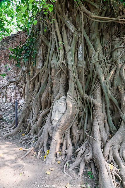 Thailand_2012-02-26-7550_2