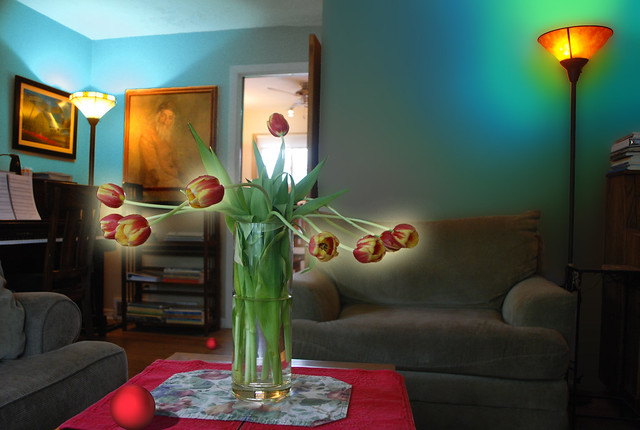 Another Look, Into the Light, Tulips and Living Room with Red Ball, May 16, 2014 9-9 full bpx