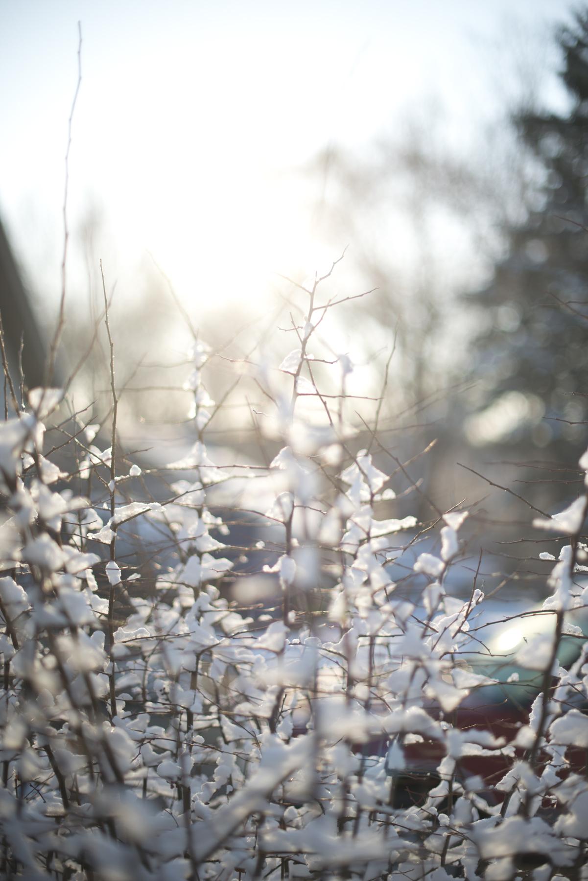 april snow2