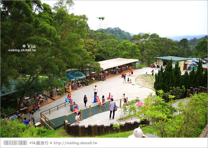 【新竹景點推薦】森林鳥花園~親子旅遊的好去處!在森林裡鳥兒與孩子們的樂園21