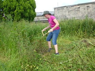 scything for bad backs