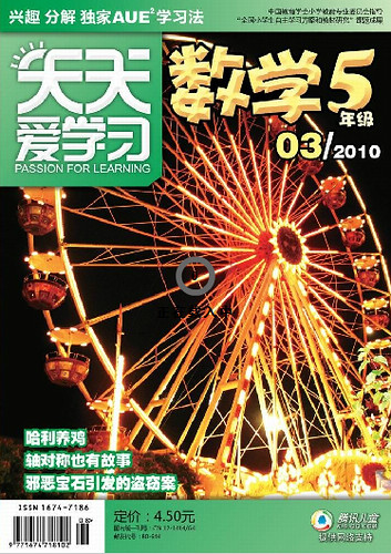 Published Cover - Spinning Ferris Wheel